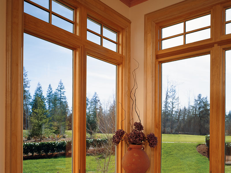 value windows doors Fusionwood series beauty photo